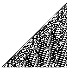 Rule 110 after 250 iterations